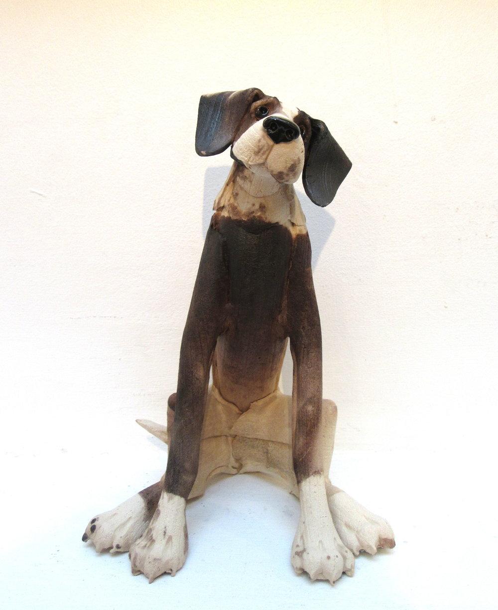 Large Sitting Plain Dog