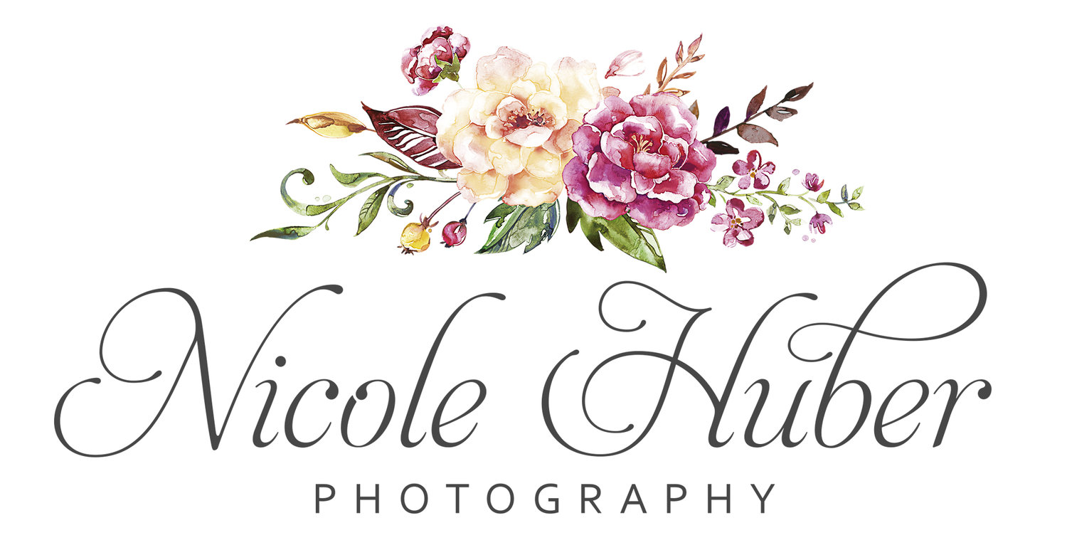Nicole Huber- Buffalo Newborn, Child, and Family Photographer
