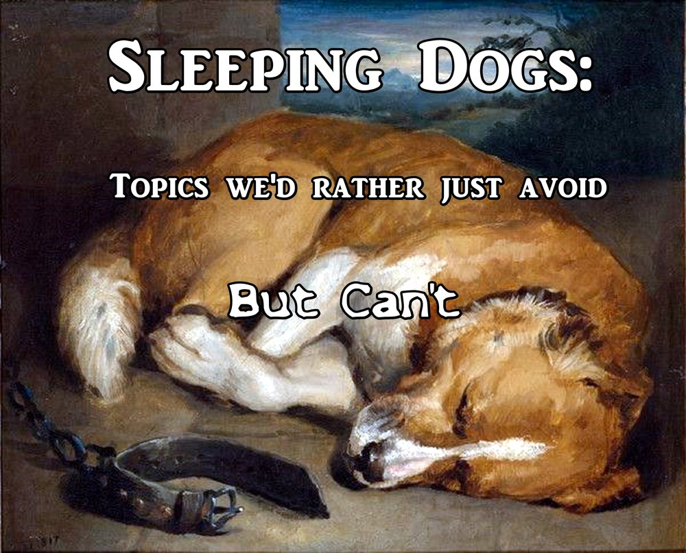 Sleeping Dogs Header 2.jpg