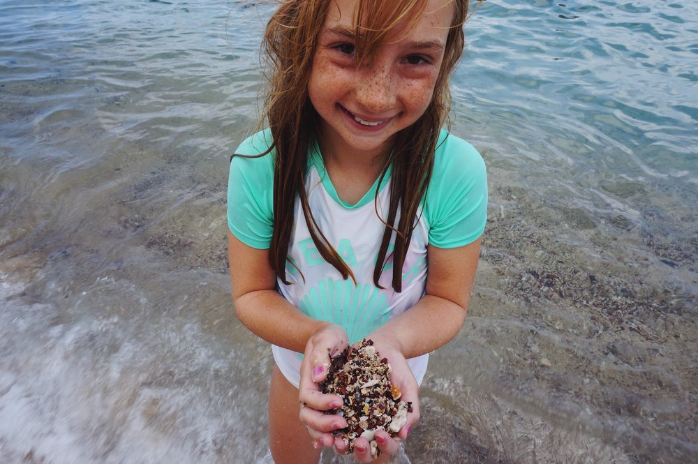 shell hunting napili maui