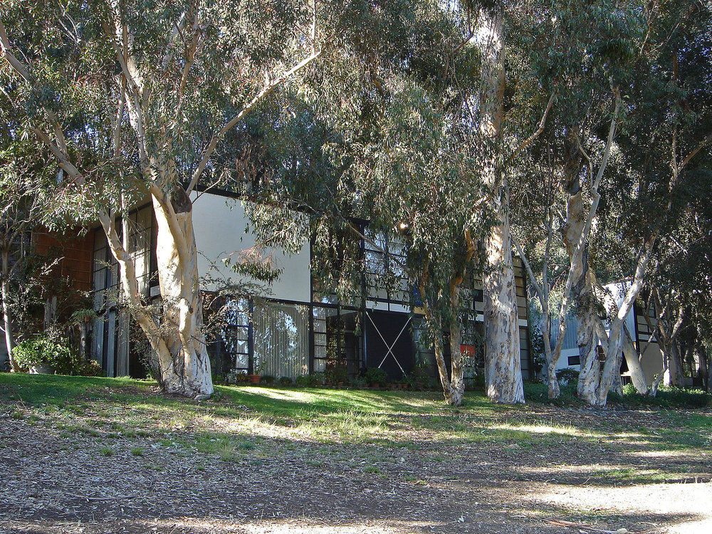 View of the Eames House showing part of the preserved meadow and Eucalyptus trees. Photo via  Wikimedia Commons .