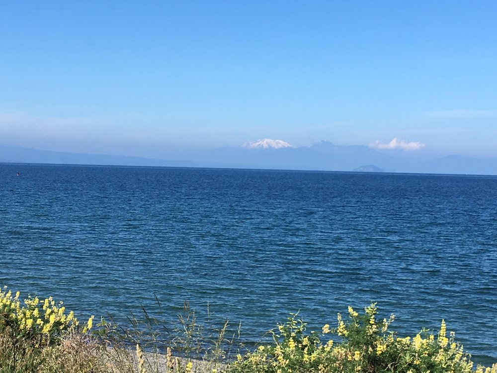 View over lake taupo with snow covered Mt Ruapehu in the distance