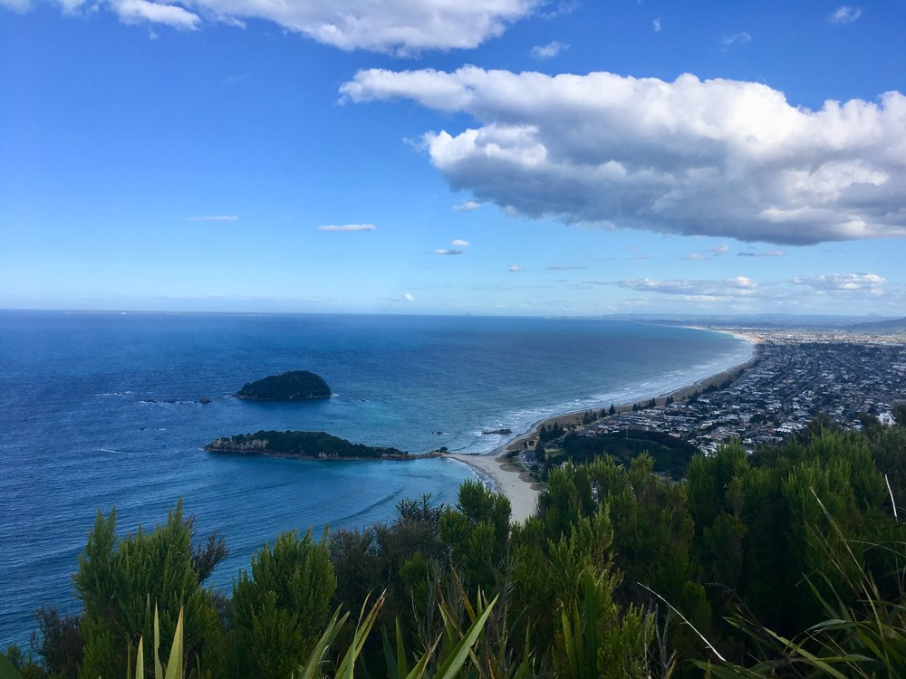 The view of Mount Maunganui from the top of the Mountain