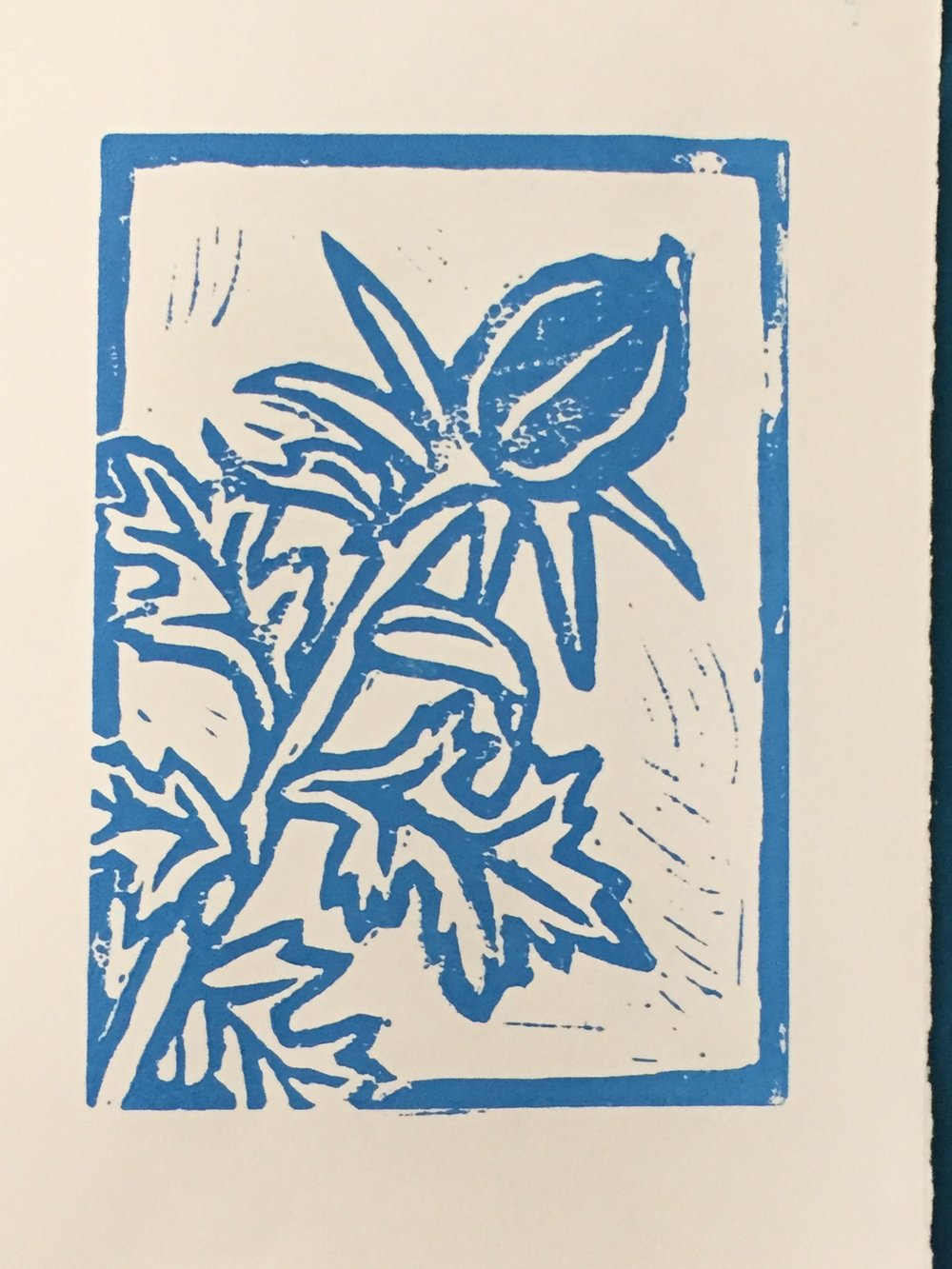 figs from thistles (Ver. 2) - 2017, Linocut