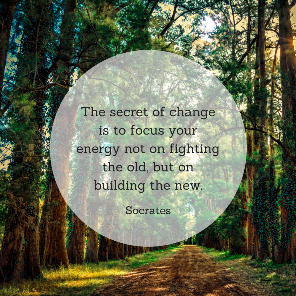 The secret of change is to focus your energy not on fighting the old, but on building the new..png