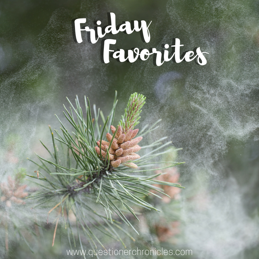 Friday Favorites 12.1.2017.png