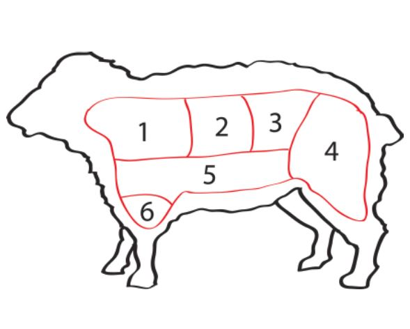 Lamb Chart