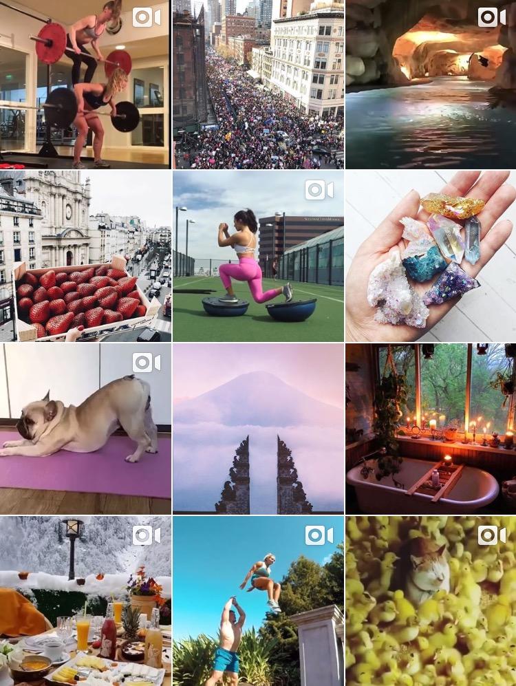 A Snapshot of Bloom's Instagram (@bloom)