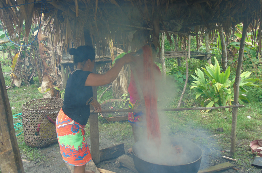 The Process of Making Emberá Animal Masks in Panama
