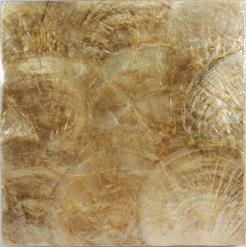 Golden Capiz Shell