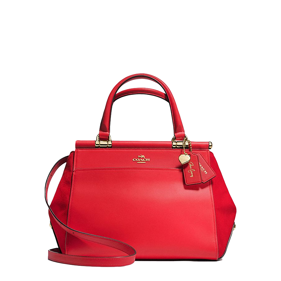 Coach Selena Grace Bag In Mixed Leathers