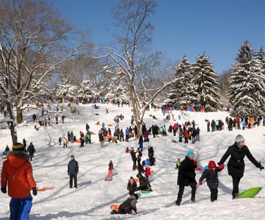 enjoy-winter-2.jpg