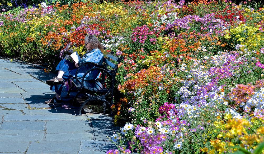 reading-flowers-central-park.jpg