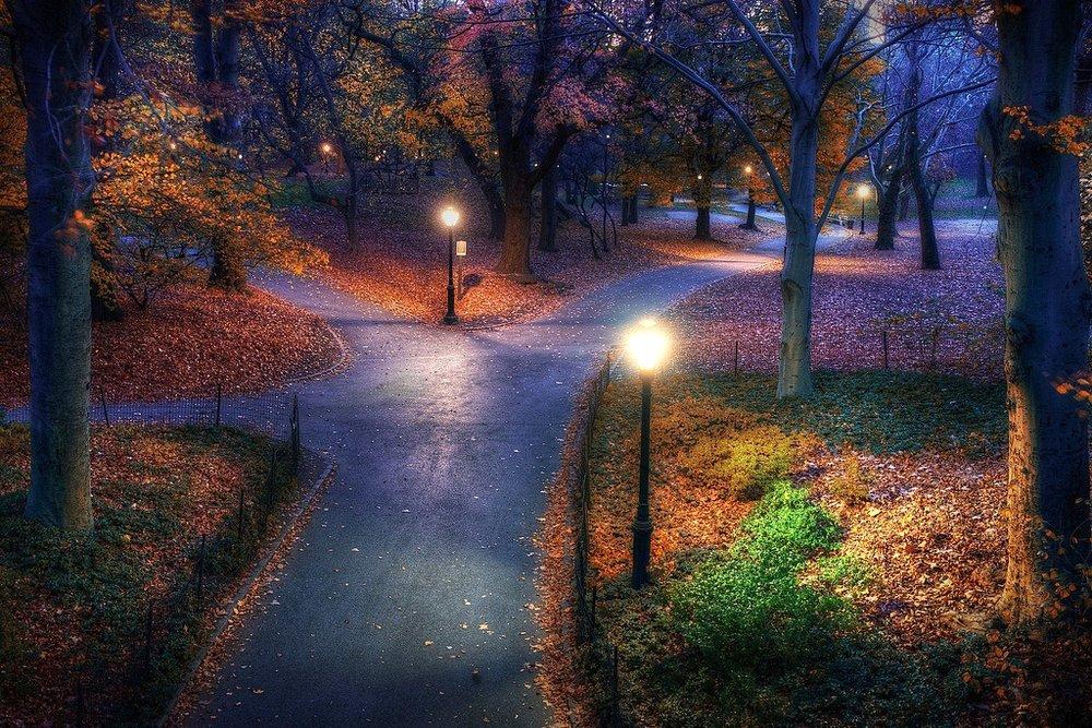 Central-Park-paths.jpg