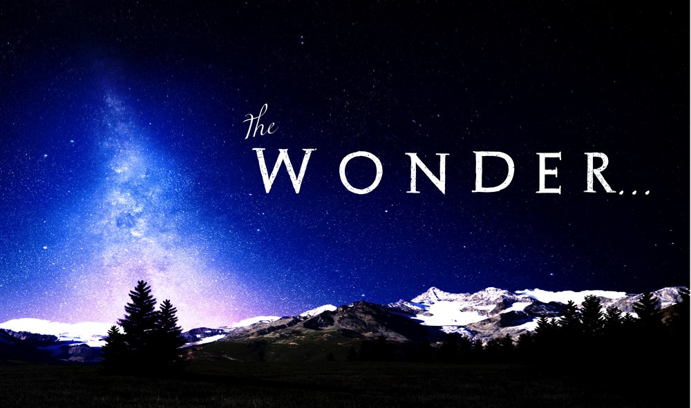 The Wonder Series Logo.jpg