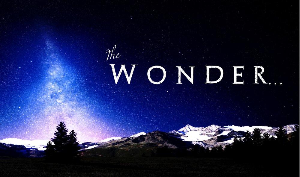 The Wonder Series Logo.jpg