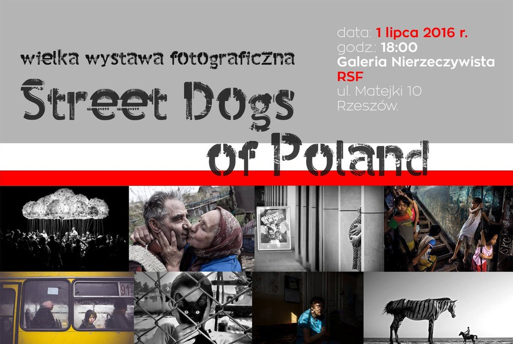 Various cities, Poland - 2016 — Street Dogs of Poland / Warsaw, Rzeszow, Bielsko-Biala / Group exhibition.