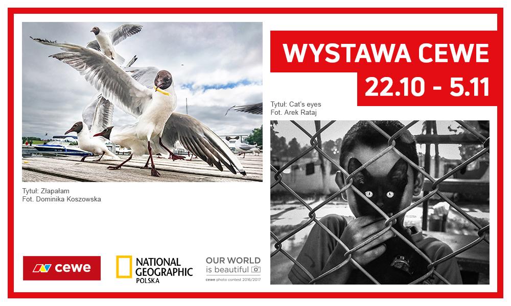 Warsaw, Poland - 2017 — CEWE
