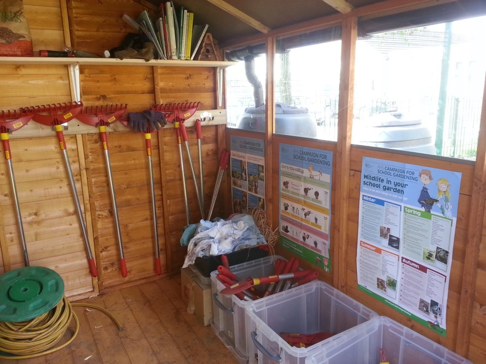 Inside the shed - tools and library.jpg