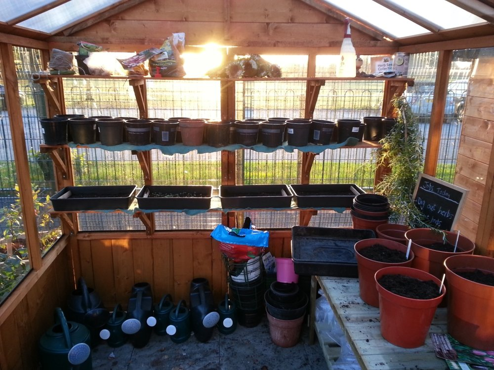 school garden greenhouse.jpg