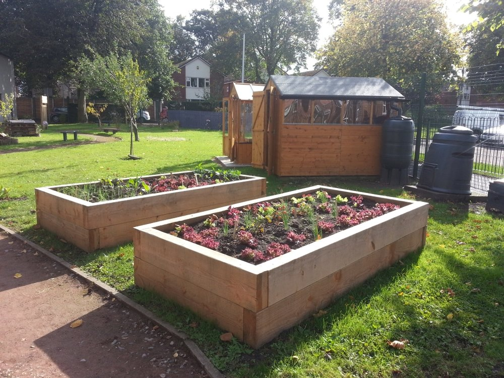 raised beds (2).jpg