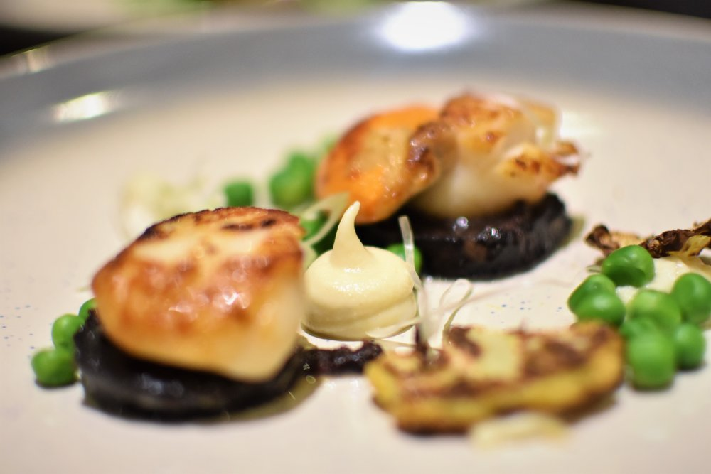 King Scallops - black pudding - caulliflower