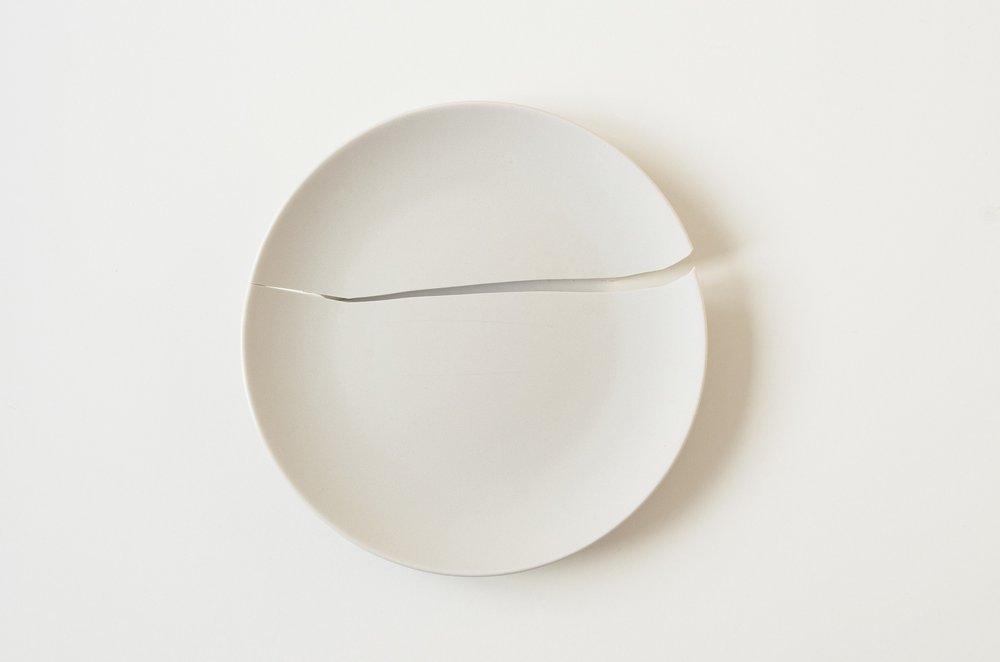 Broken_plate_birdsong_consultancy