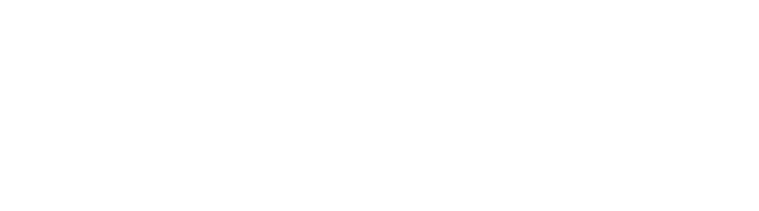 Birdsong Consultancy | Digital, marketing and communications services
