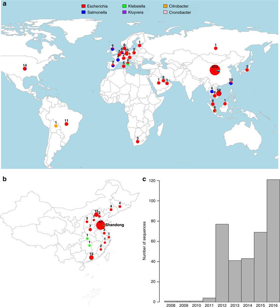 图说: a. 全球耐药性基因mcr-1在全球分布情况 b. 最新研究耐药性基因mcr-1中国分布情况 c. 发现耐药性基因取样各年份数量对比  图片来源: Nature Communications