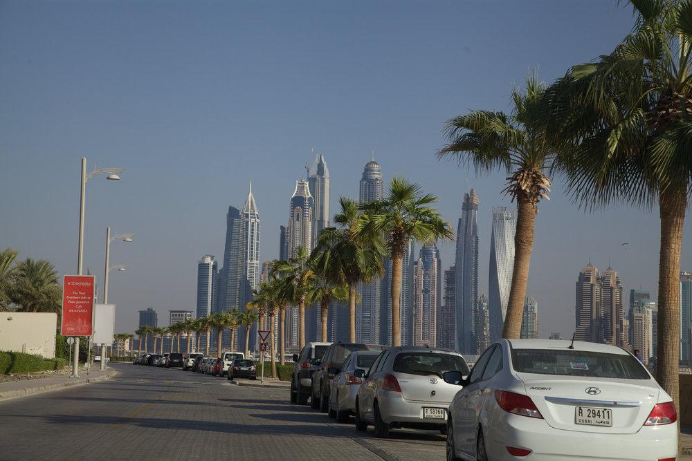 朱美拉棕榈岛与迪拜商业中心隔海相望