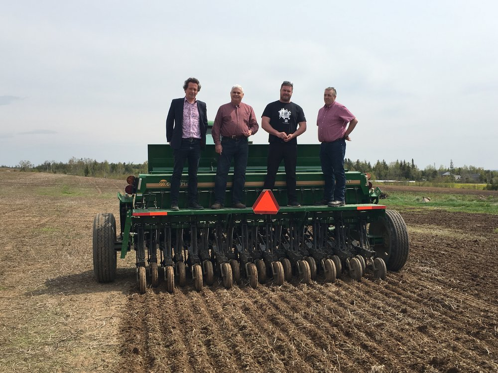A no-till grain drill was used on June 9 to plant Cerveza malting barley at Larch Grove Farm in Cormack, N.L. Pictured standing on the grain drill, from left to right, are Newfoundland Distillery Company co-owner Peter Wilkens, area MHA Scott Reid, Ian Richardson of Larch Grove Farm, and Fisheries and Land Resources Minister Steve Crocker. (Vanessa Kavanagh photos)