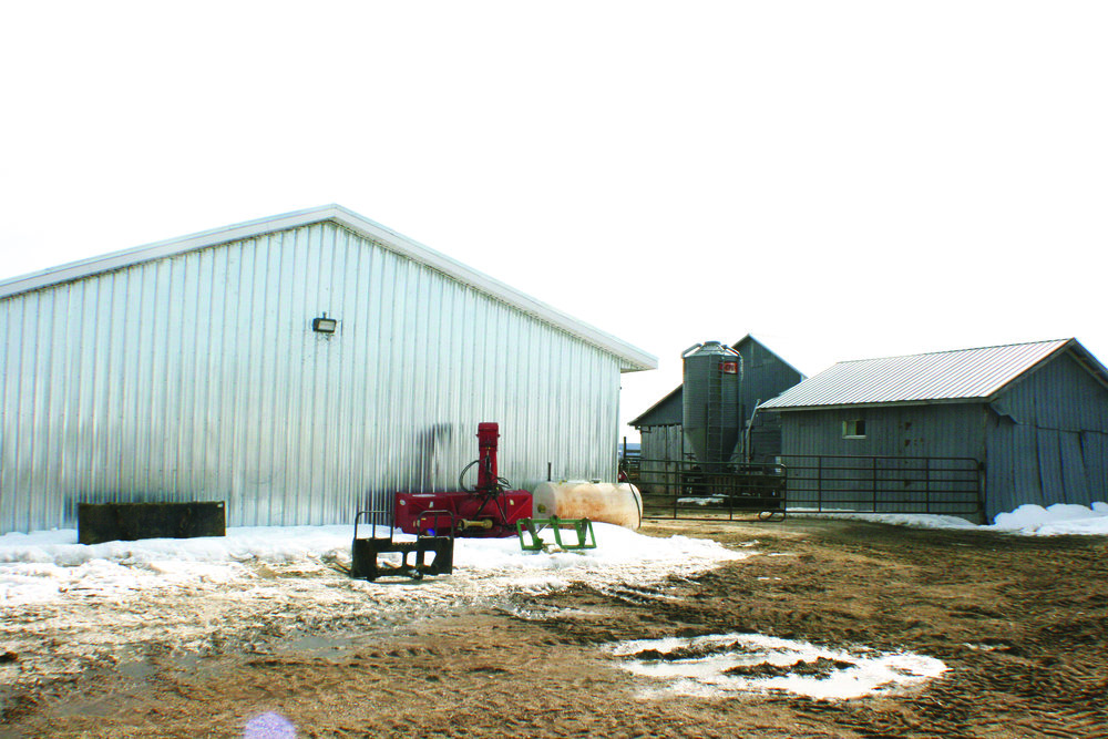 Outbuildings on the Boudreau farm near Memramcook, N.B. (Joan LeBlanc photo)
