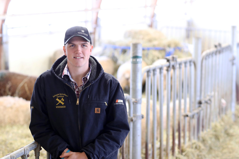 Thian Carman, a young sheep farmer from Nova Scotia's Digby County, is enrolled in the animal science program at Dalhousie University's Faculty of Agriculture in Truro, N.S. (Nick Pearce photo)