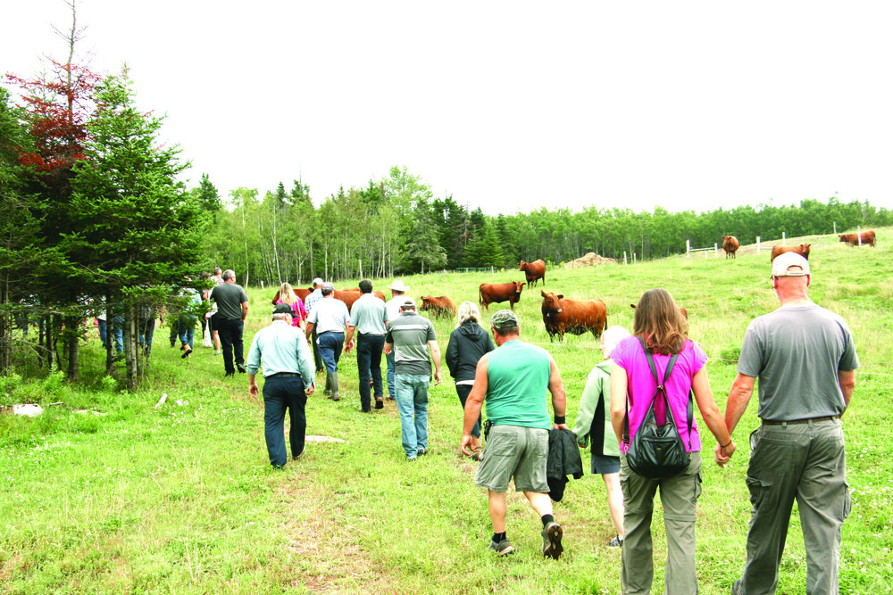 Pasture tour group participants on the Lackie farm.