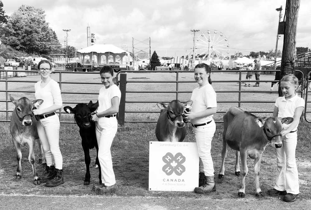 This is the 57th year that Hill 'n' Dale 4-H Club dairy project participants attended the South Shore Exhibition in Bridgewater, N.S. From left, Emily Riding, Anna Barry, Abbie Foster, and Grace Monaghan.