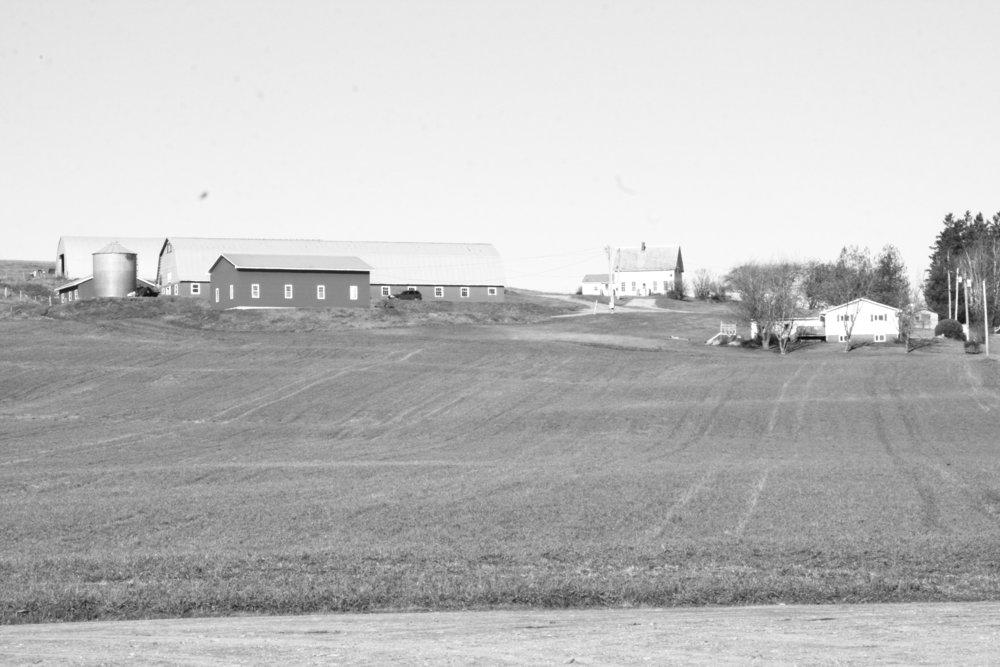 FF Dec. 18 Perryhill Farm Pic 1.JPG
