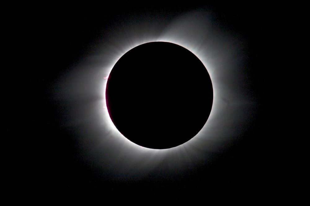 Eclipse Corona and Prominence.jpg