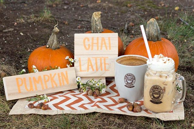 That's right people! The real deal pumpkin chai latte is back in town along with our full fall drink lineup starting today.  Stop into any of our locations and smash a pumpkin (chai latte)