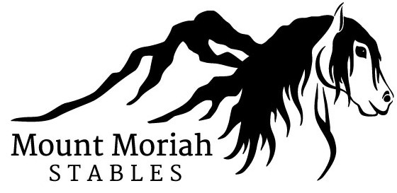 mms-logo-fill_black.jpg