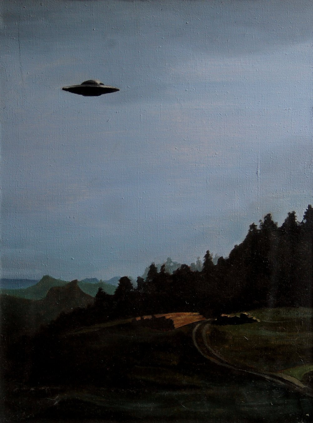 Unidentified Flying Object,2010, 40cm x 30cm, Oil on canvas.jpg
