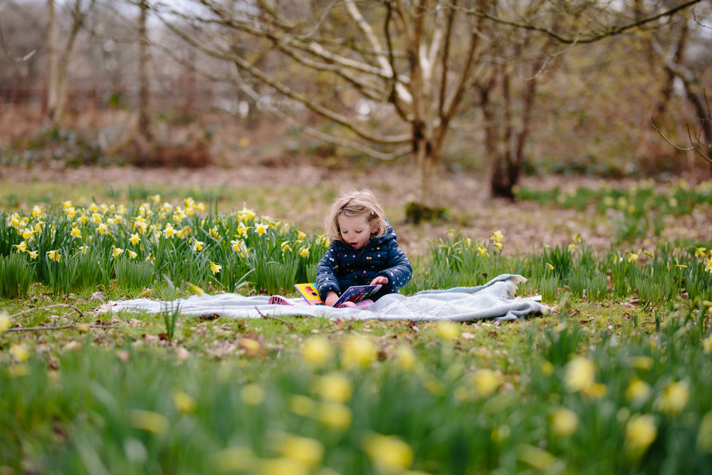 Toddler sitting in daffodils Richmond Family Photographer