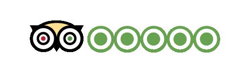 tripadvisor-logo-01.png