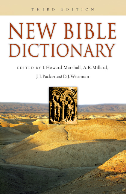new bible dictionary.jpg