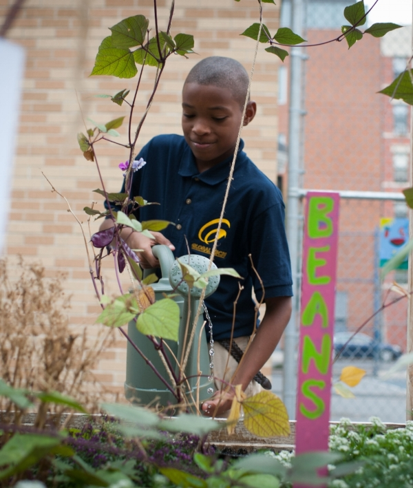 201508_NancyBorowick_garden_7_gardening_watering_wateringcan_beans_sign_students_kids_working_individual_smiles_moment_lessoncropped.jpg