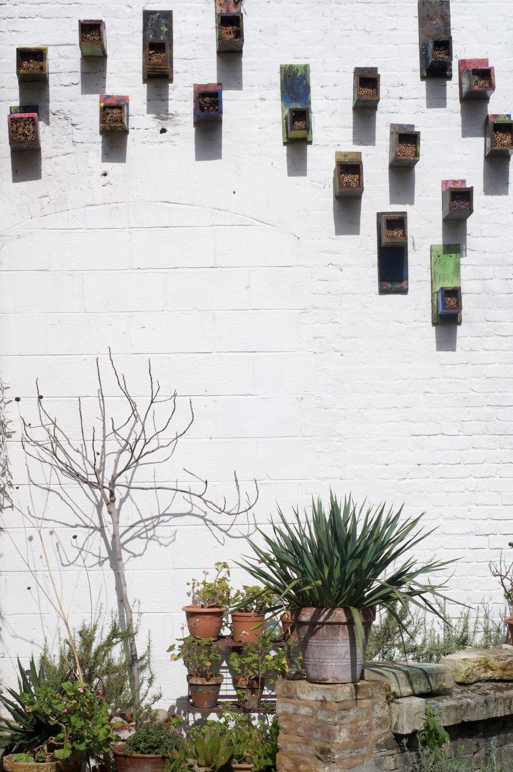 Birdboxes.jpg