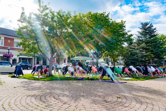 yoga_DD.jpg