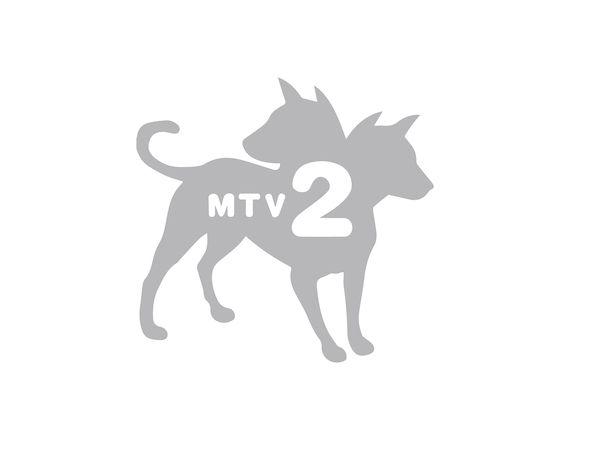 MTV2-compressor.jpg