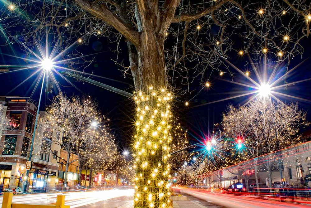 Downtown Fort Collins Holiday lights.jpg