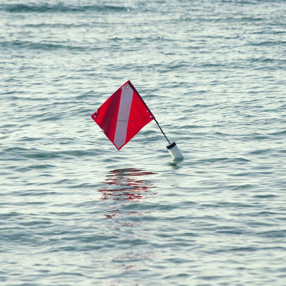 glendalynn dixon warning flag