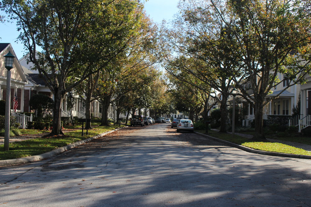 Typical Residential Street in Celebration lined with Cottage Home